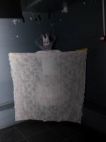 7 Dollhouse Queerparty Willemeen in Arnhem (Medium)