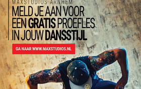MaxStudios Proefles